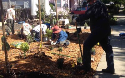 Swale Tales: An experience of the Vallejo Installations and 7 Food Forest Tour