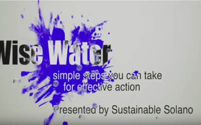 Wise Water: An Informative Video from Sustainable Solano