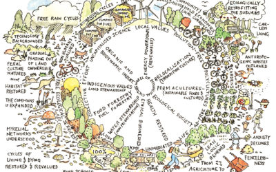 Sustainability Through Permaculture in Solano County