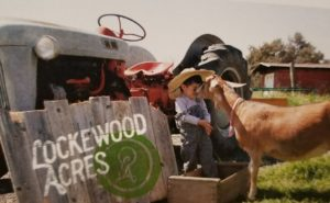 Fun on the Farm at Lockewood Acres @ Lockewood Acres