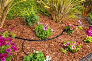 Vacaville Permaculture Gardening and Water-Efficient Inline Drip System Workshop (Day 2) @ Register for address