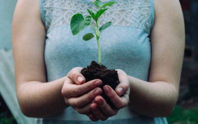 Healthy Soils, Healthy Farms, Healthy People