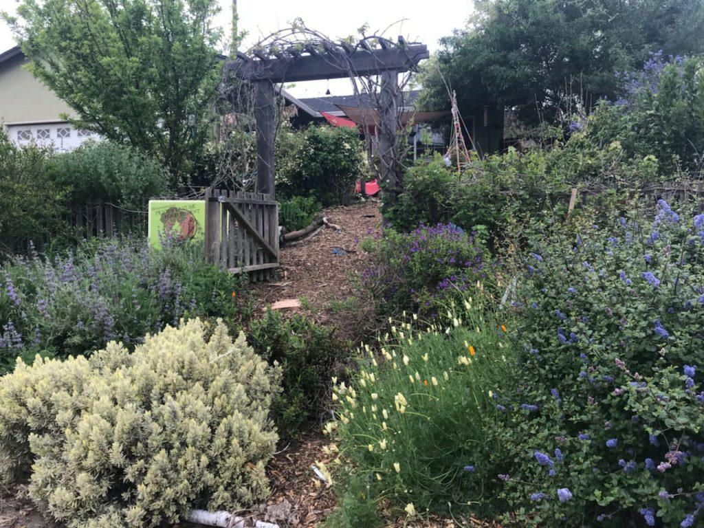 Greyhawk Garden after installation