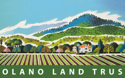 Solano Land Trust is Interested in What You Think About the Lands of Solano County!