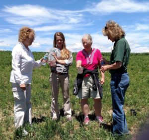 Women for the Land Solano County Learning Circle @ Solano Land Trust