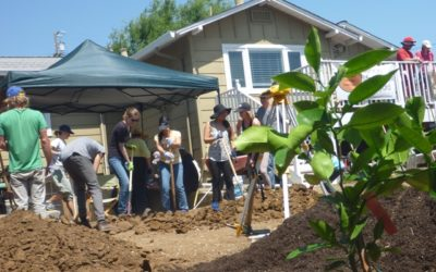 Big Vision: Sustainability Curriculum and Certification Program for Solano High School Students