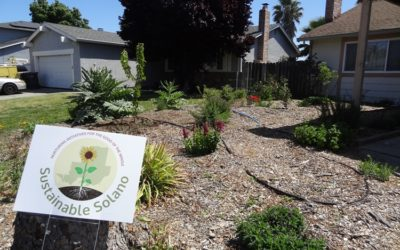 Dixon, Rio Vista Residents: Know the Perfect Spot for a Sustainable Garden?
