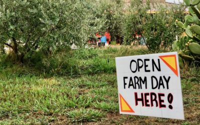 Explore Local Farms at Open Farm Days in Vacaville