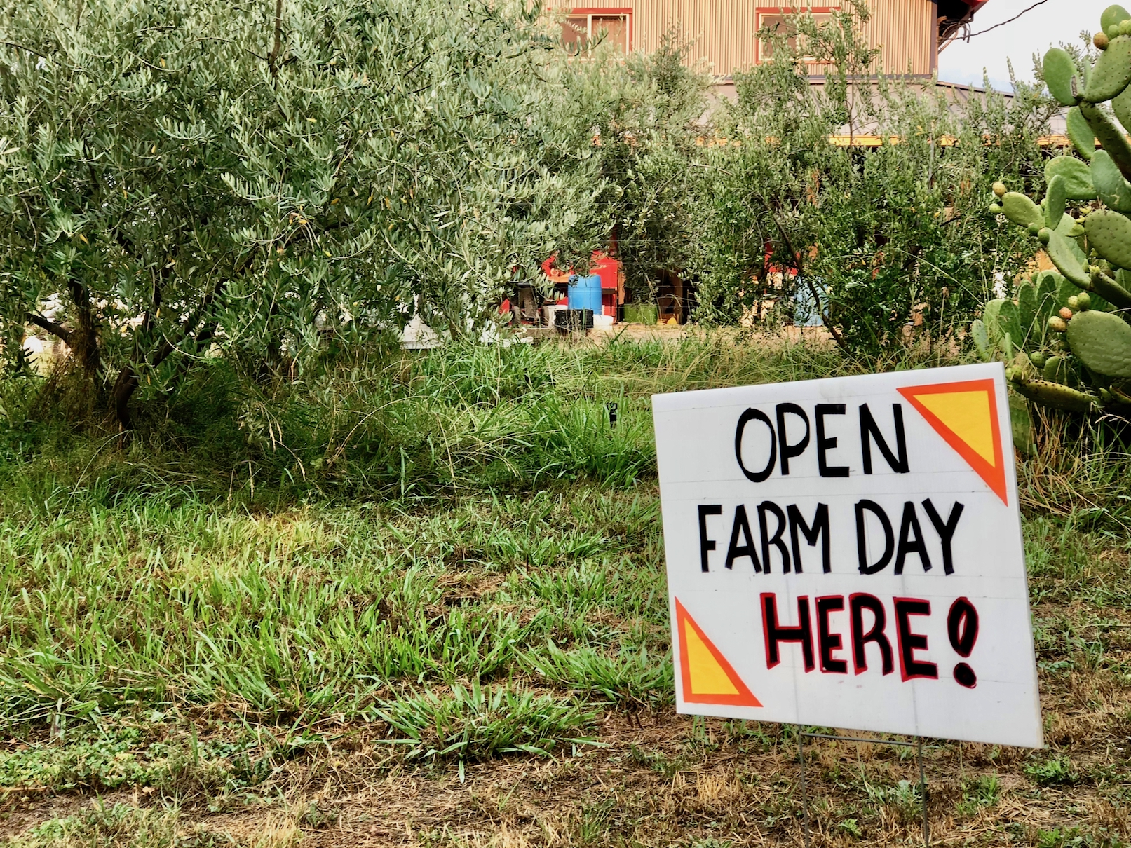 Explore Local Farms at Open Farm Days in Vacaville - Sustainable Solano
