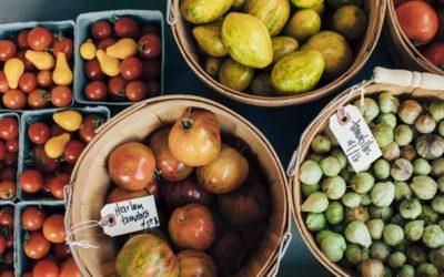 CSA Farm Spotlight: Be Love Farm