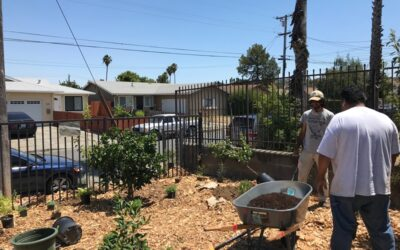 Resilient Neighborhoods Plant Seeds for Future in Uncertain Times
