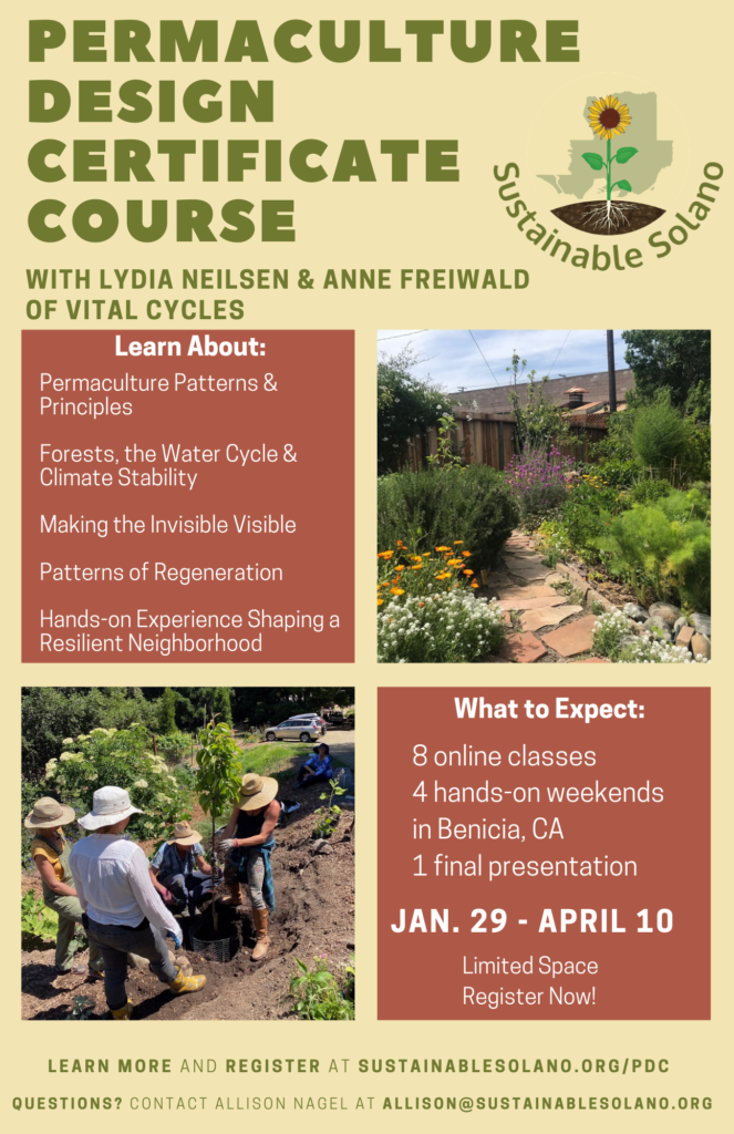 Permaculture Design Certificate Course Begins @ Online/Zoom/Benicia