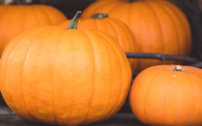 Calabaza en Tacha (Candied Pumpkin)