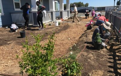 Veterans' Serenity Garden Takes Partnership & Persistence
