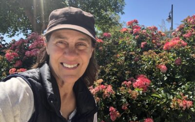 The Sustainable Rose Garden